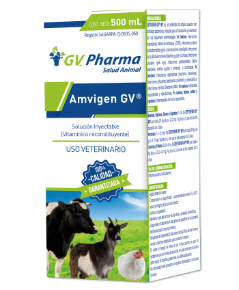 AMVIGEN GV 500 ML